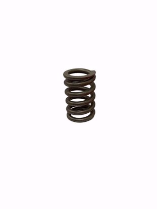 Picture of Exhaust Pipe Flange Spring